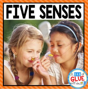 Five Senses Science Unit