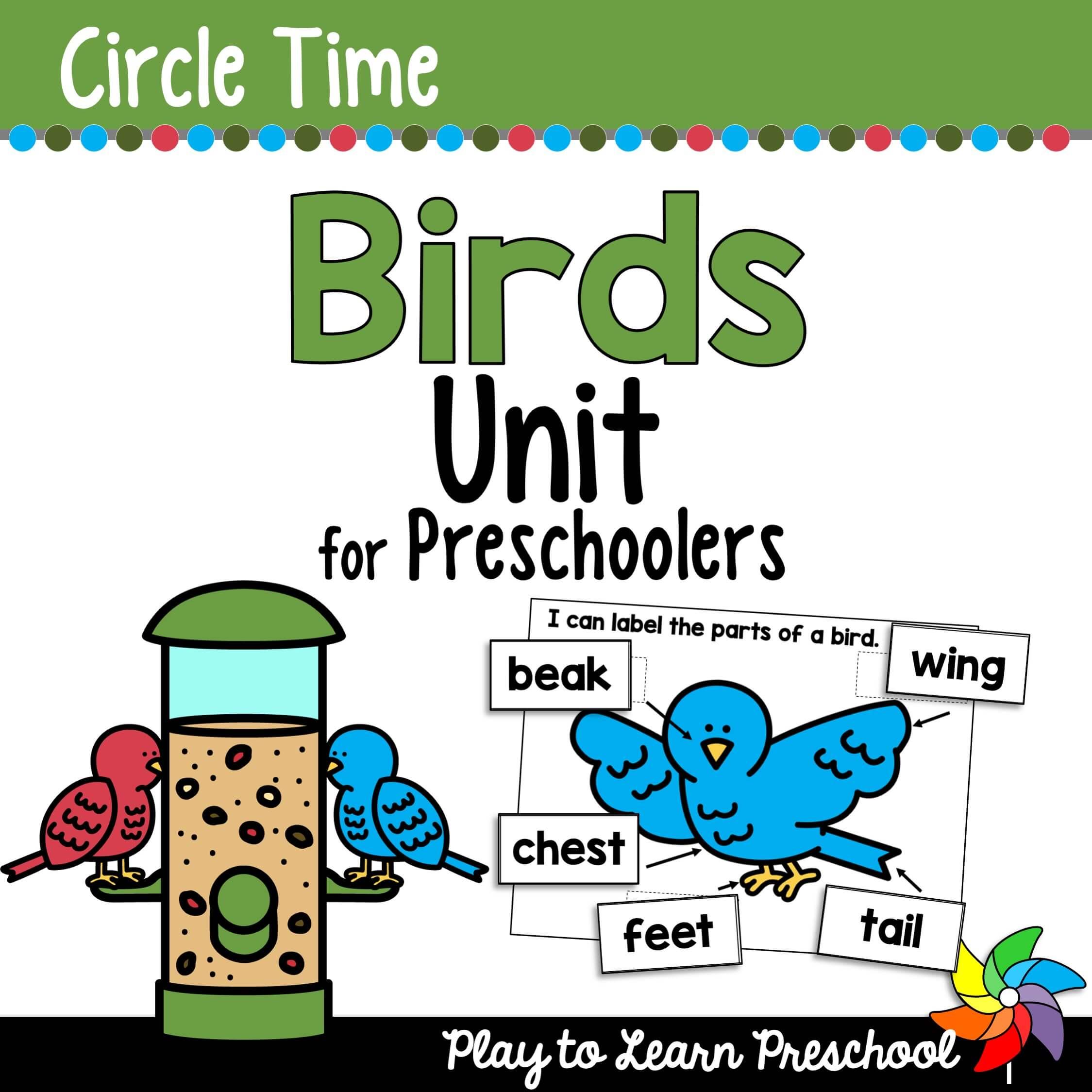Preschool Birds Preschool Unit