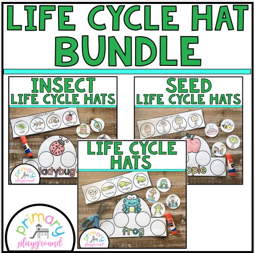 Preschool Life Cycle Hats Bundle