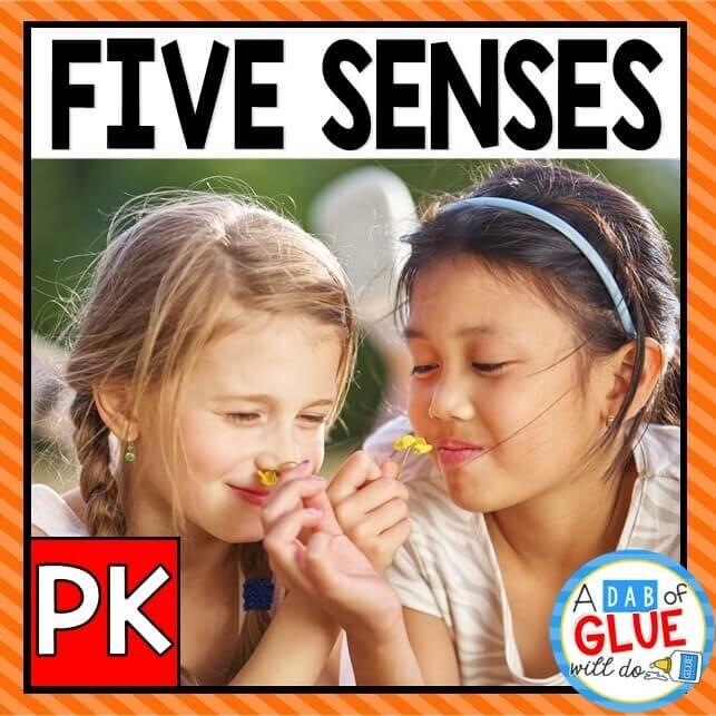 Preschool Prek Five Senses Thumbnail