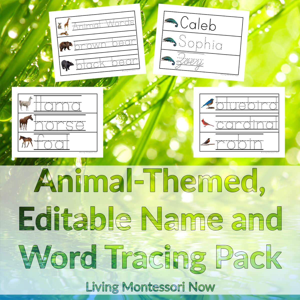 Animal-Themed, Editable Name and Word Tracing Pack - LivingMontessoriNow